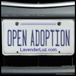 Open Adoption License Plate